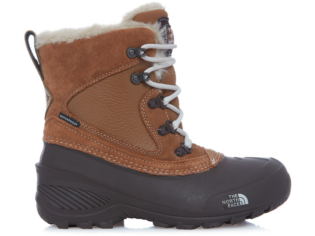 431a76844d The North Face Youth Shellista Extreme Shoes Dchndbn/Mnltivy ...